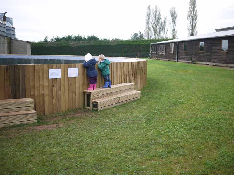 Little Owl Farm Park, Worcestershire